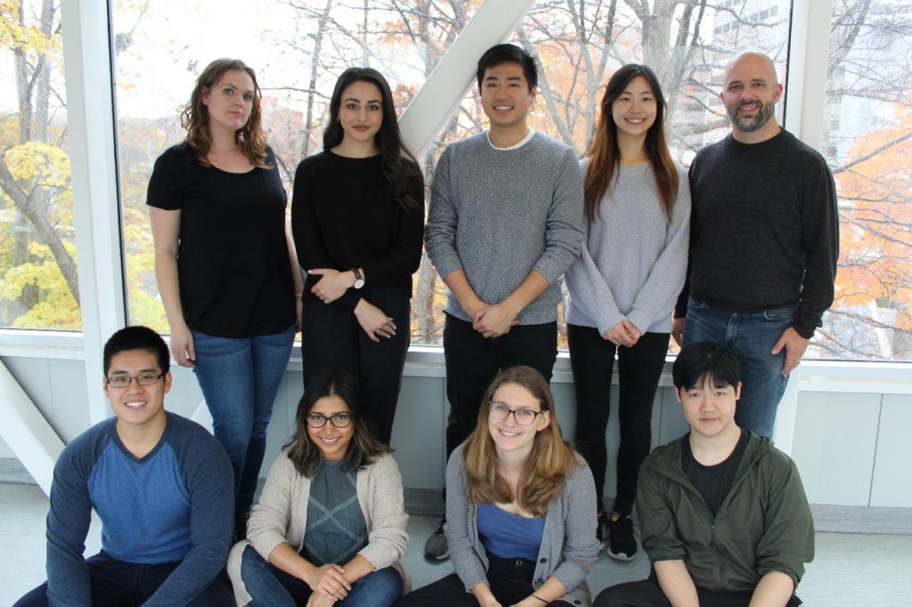 Heit Lab 2019-2020